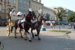 meydanda-atlar-horses-in-the-square