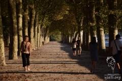 In-the-Park-Parkta
